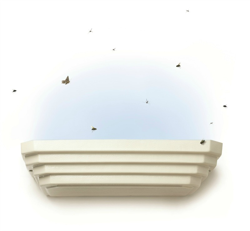 Flying insect traps