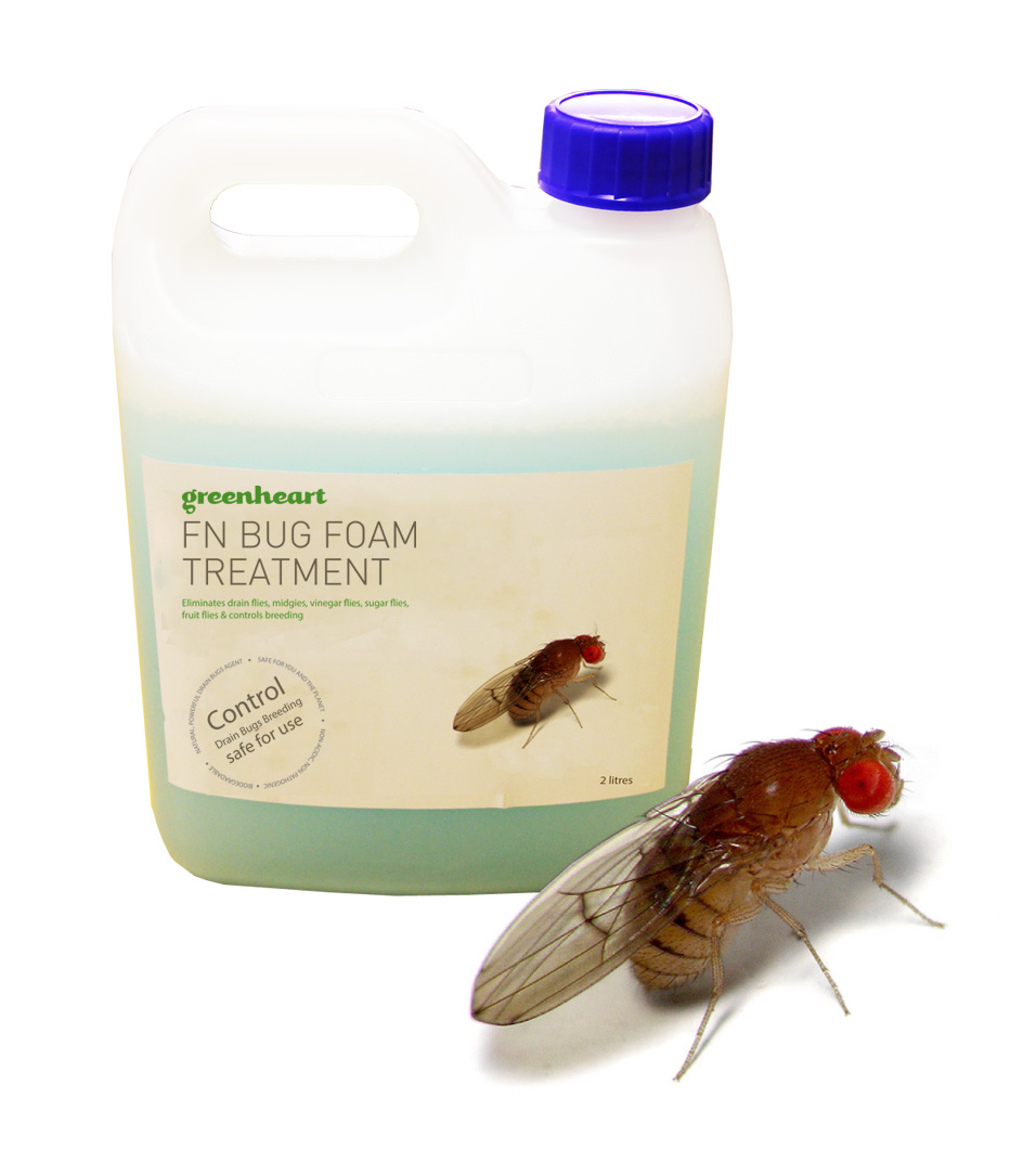 Fruit fly treatment